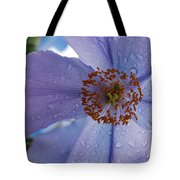 Close Up After The Rain Tote Bag