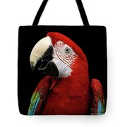 Close-up Funny Portrait Green-winged Macaw, Ara Chloroptera, Isolated Black Background Tote Bag by Sergey Taran