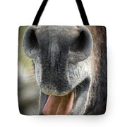 Close-up Of A Donkey's Mouth Tote Bag