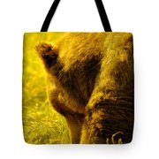 Close Up Of A Grizzily Tote Bag