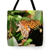 Close-up Of A Vibrant Gulf Fritilary Butterfly  Tote Bag
