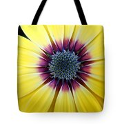 Close-up Of A Yellow African Daisy Tote Bag