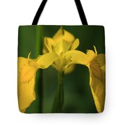 Close Up Of A Yellow Bearded Iris Tote Bag