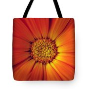 Close Up Of An Orange Daisy Tote Bag