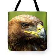 Close-up Of Golden Eagle With Turned Head Tote Bag