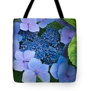 Close-up Of Hydrangea Flowers Tote Bag