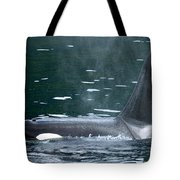 Close-up Of Killer Whale In Johnstone Tote Bag
