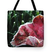 Close Up Of Leaf And Frost Tote Bag