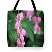 Close Up Of Peacock Pink Bleeding Hearts On Hunter Green Foliage 2 Tote Bag