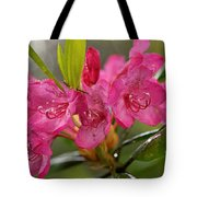 Close-up Of Pink Horatio Flowers Tote Bag