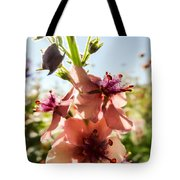 Close-up Of Pink Mullein Flowers Tote Bag