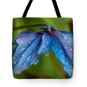 Close-up Of Raindrops On Blue Flowers Tote Bag