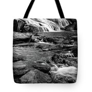 Close Up Of Reedy Falls In South Carolina B W Tote Bag