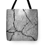 Close Up Of Tree Trunk Tote Bag
