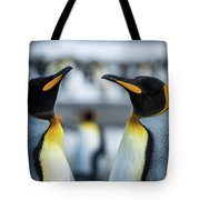 Close-up Of Two King Penguins In Colony Tote Bag