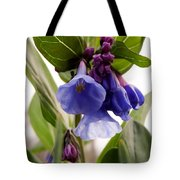 Close-up Of Virginia Bluebells Tote Bag