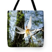 Close-up Of White Trout Lily Tote Bag