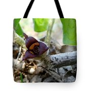 Close-up Of Wild Ginger Tote Bag