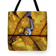 Close Up Of Yellow Leaf Tote Bag