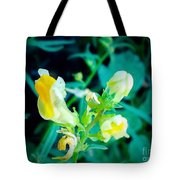 Close Up Of Yellow Wild Flowers Tote Bag