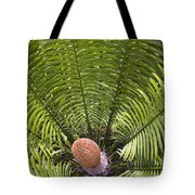Close-up Palm Leaves Tote Bag