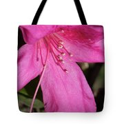 Close Up Pink Lily Tote Bag