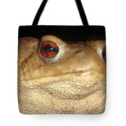 Close Up Portrait Of A Common Toad Tote Bag