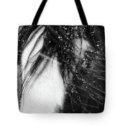 Close Up Portrait Of A Horse In Falling Snow Tote Bag