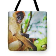 Close-up Portrait Of A Nicaraguan Spider Monkey Sitting And Looking At The Camera Tote Bag