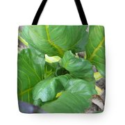 Close Up With Chard Tote Bag