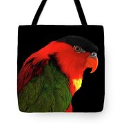 Close-up Yellow-bibbed Lory, Lorius Chlorocercus, Isolated On Black Background Tote Bag by Sergey Taran