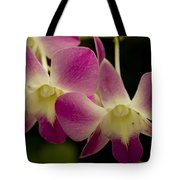 Close View Of A Pink Orchid Flowers Tote Bag