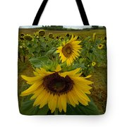 Close View Of A Sunflower At The Edge Tote Bag