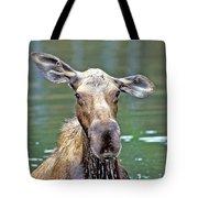 Close Wet Moose Tote Bag