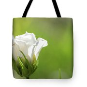 Closed White Flower. Tote Bag