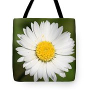 Closeup Of A Beautiful Yellow And White Daisy Flower Tote Bag