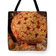 Closeup Of A Colorful Cushion Star Tote Bag