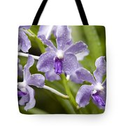 Closeup Of A Hybrid Cultivated Orchid Tote Bag