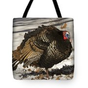 Closeup Of An Adult Male Wild Turkey Tote Bag