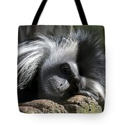 Closeup Of Black And White Angolian Primate Sleeping On Log Raft Tote Bag