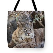 Closeup Of Bobcat Tote Bag