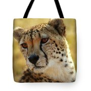Closeup Of Cheetah Tote Bag