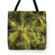 Closeup Of Coconut Palm Trees Tote Bag