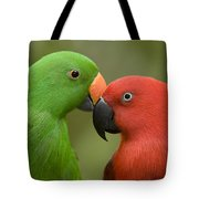 Closeup Of Male And Female Eclectus Tote Bag