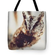 Closeup Portrait Of A Young Owl Looking At The Camera Tote Bag