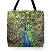 Closeup Portrait Of An Indian Peacock Displaying Its Plumage Tote Bag