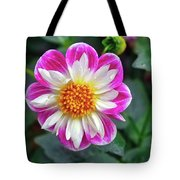 Closeup View Of A Dahlia That Was In The Cesky Krumlov Castle Gardens Tote Bag