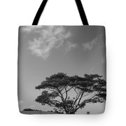 Cloud Shadow Tote Bag