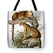 Clouded Leopard, 1883 Tote Bag
