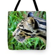 Clouded Leopard In The Grass Tote Bag